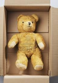 teddy in box