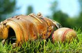 baseball glove in the grass
